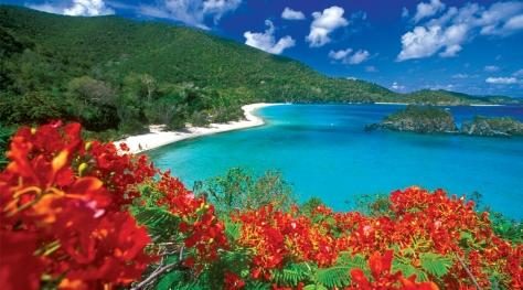 DRI Caribbean